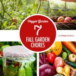 7 Fall Garden Chores for the Harvets | Food Bloggers of Canada