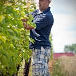 Canadian Wine: Nova Scotia's Avondale Sky Winery