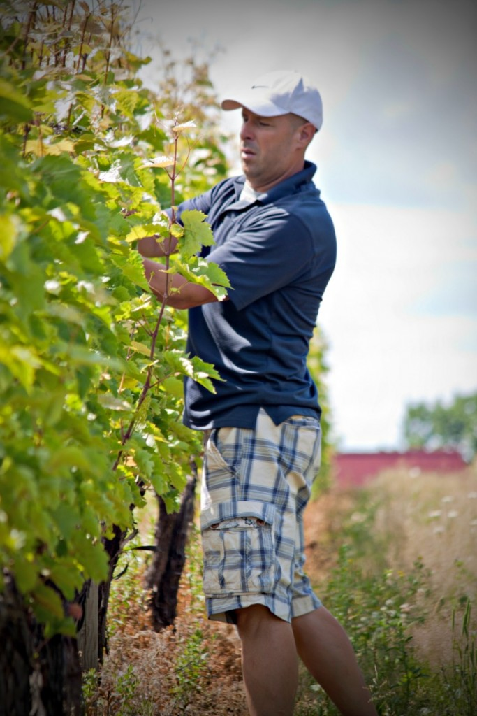Canadian Wine: Nova Scotia's Avondale Sky Winery