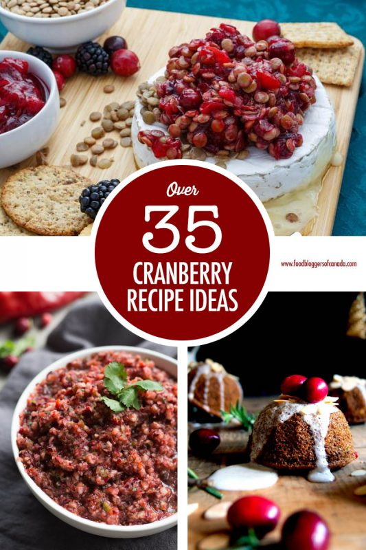Over 35 Cranberry Recipe Ideas | Food Bloggers of Canada