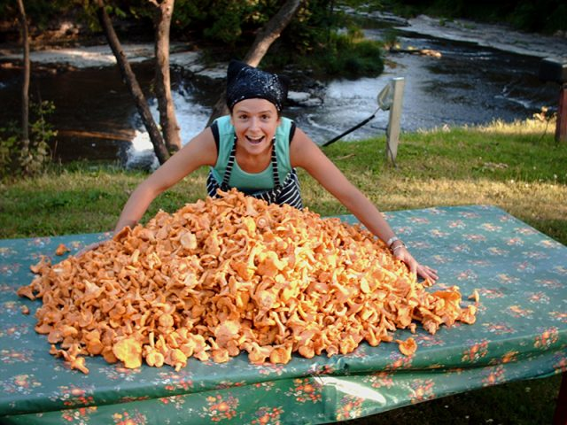Canada's Chefs: Nancy Hinton of La Table des Jardins Sauvages