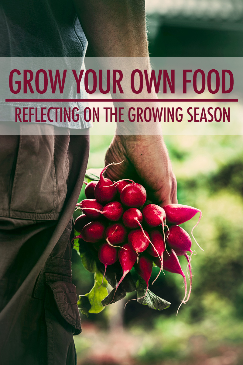 Grow Your Own Food: Reflecting on the Growing Season | Food Bloggers of Canada
