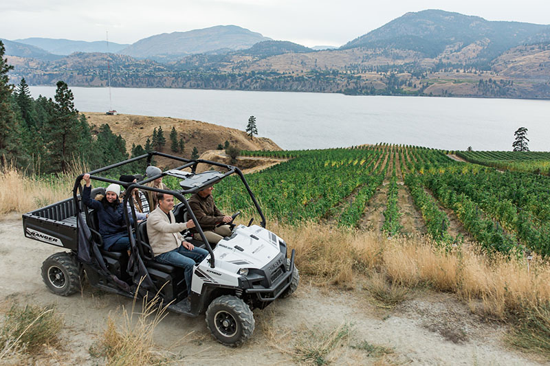 Driving through an Okanagan vineyard