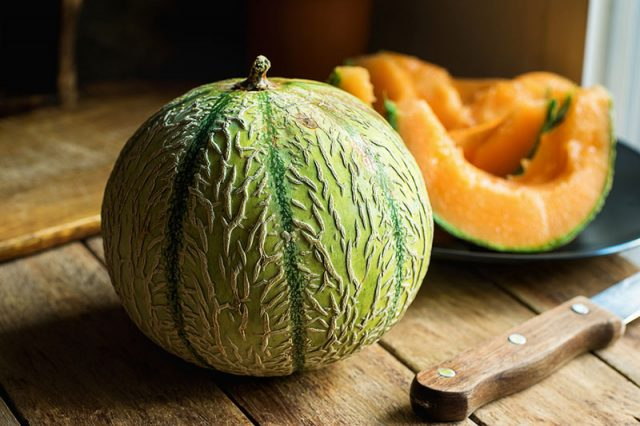 Growing Melons in Canada | Food Bloggers of Canada
