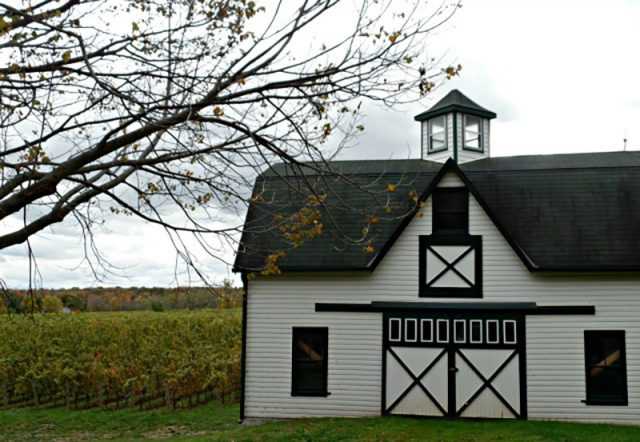 Discover Ontario Wine Country - A Regional Guide | Food Bloggers of Canada