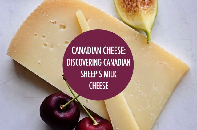 Discovering Canadian Sheep's Milk Cheeses | Food Bloggers of Canada