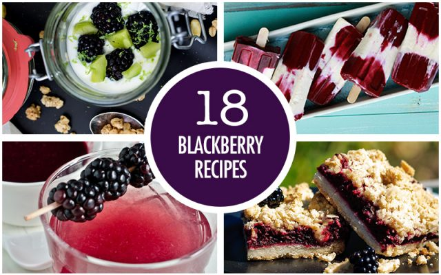 18 Juicy Blackberry Recipes | Food Bloggers of Canada