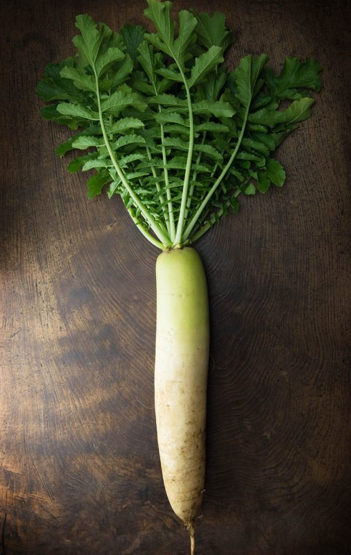 How to Grow Daikon | Food Bloggers of Canada