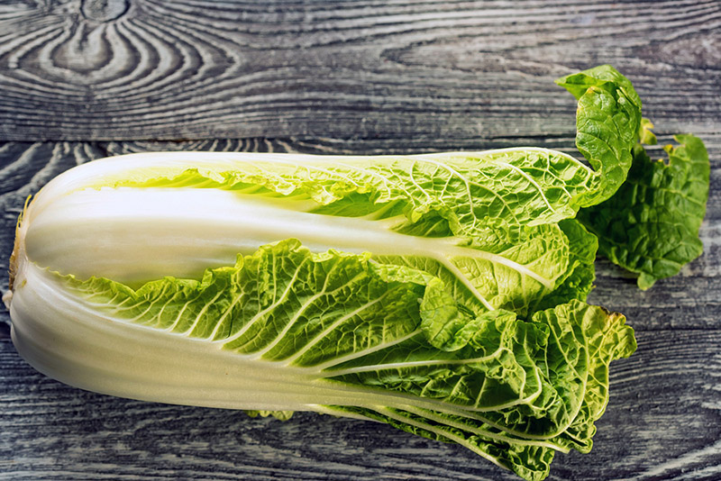 How To Grow Napa or Chinese Cabbage | Food Bloggers of Canada