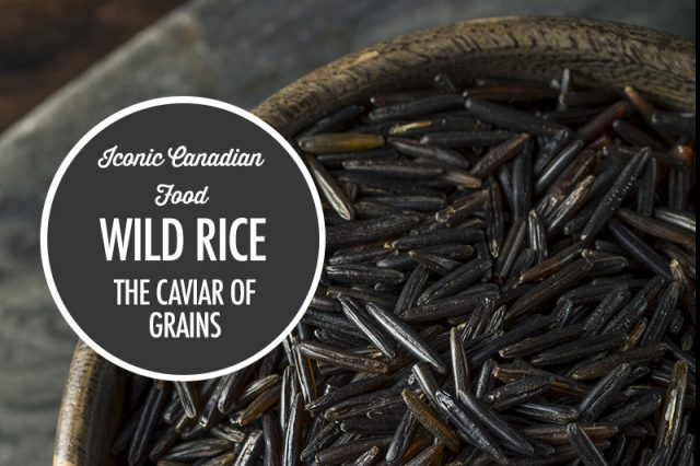 Wild Rice: The Caviar of Grains | Food Bloggers of Canada