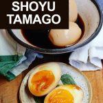 How to Make Shoyu Tamago
