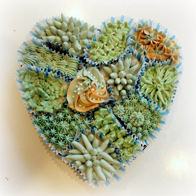Pull Apart Succulent Cake by Pretty Petunias