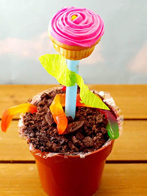 Cupcake Flower Pots | Food Meanderings