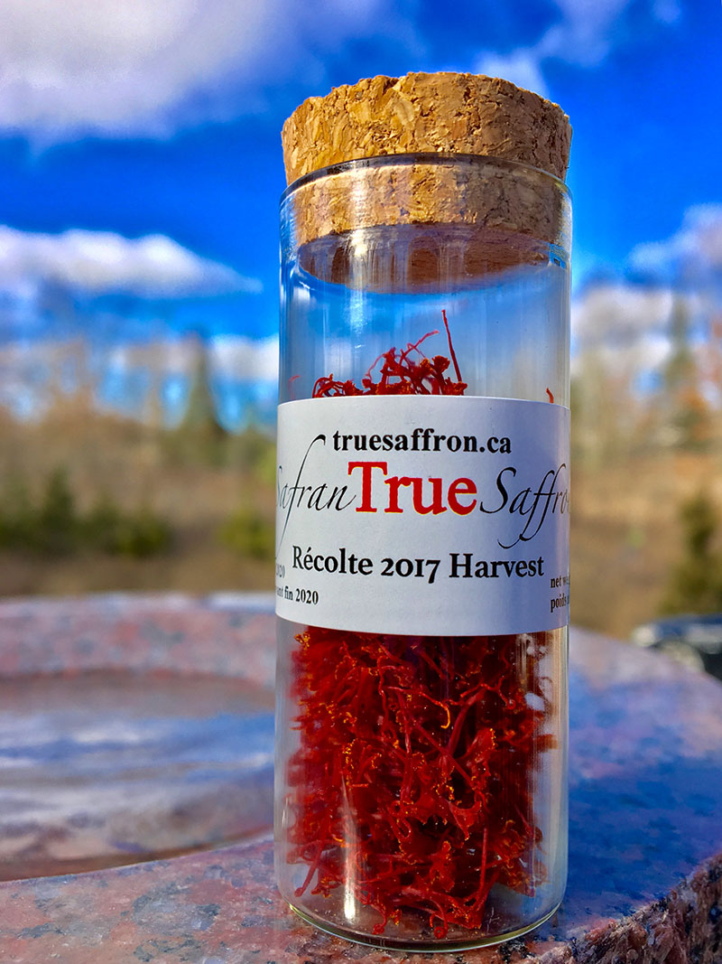 Canadian Tastemakers: True Saffron | Food Bloggers of Canada