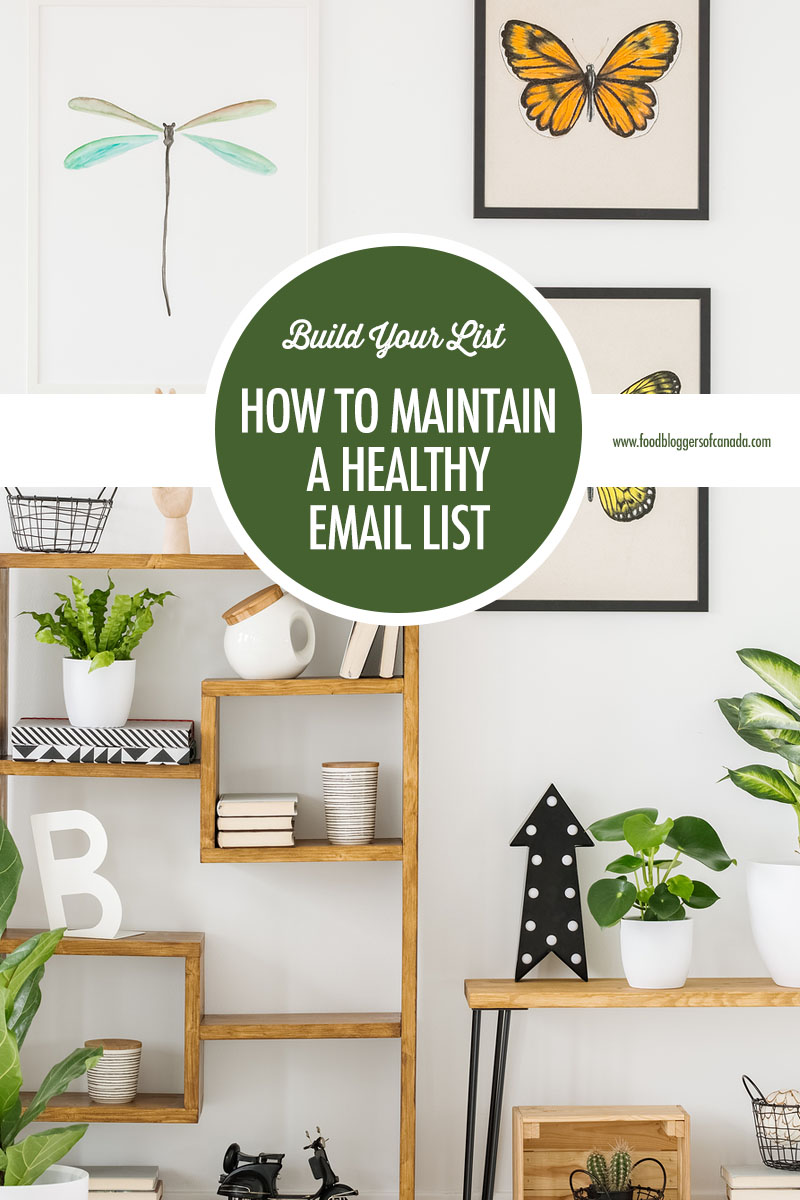How To Maintain A Healthy Email List | Food Bloggers of Canada