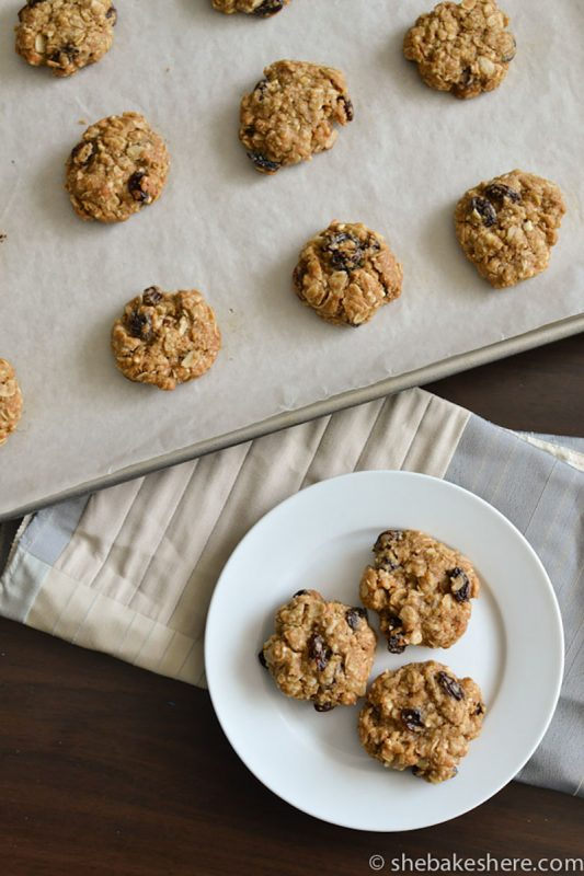 Almond Meal Oatmeal Raisin Cookies | She Bakes Here
