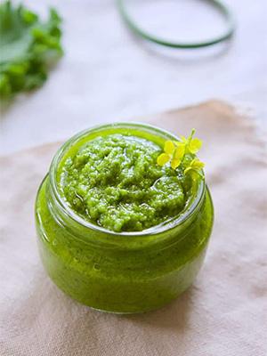 Garlic Scape Kale Pesto | Melissa Torio