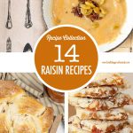 14 Raisin Recipes | Food Bloggers of Canada