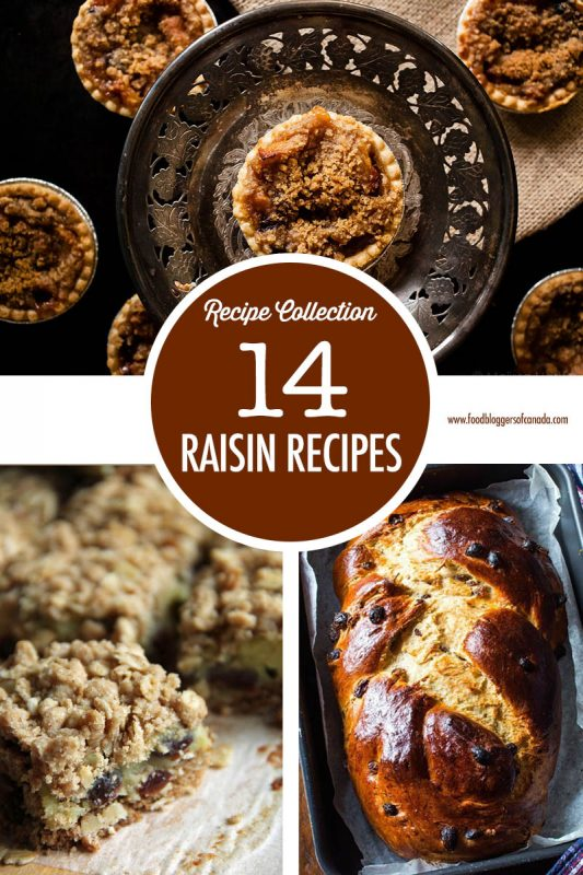 14 Raisin Recipe | Food Bloggers of Canada