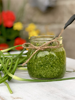 Garlic Scape Pesto | Sneaky Mommies