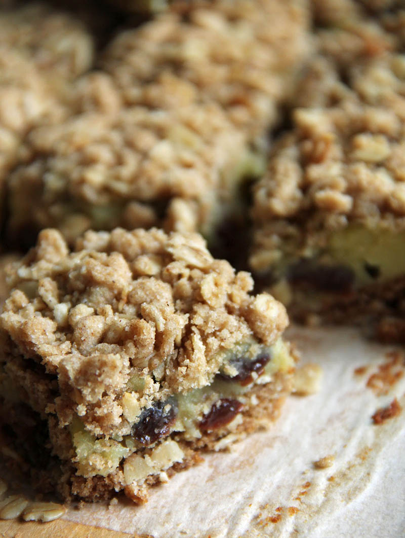Sour Cream Raisin Bars | Jo and Sue