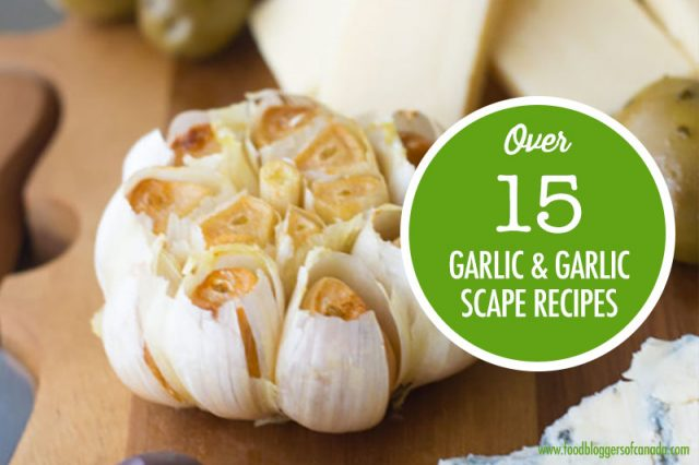 Over 15 Garlic and Garlic Scape Recipes | Food Bloggers of Canada