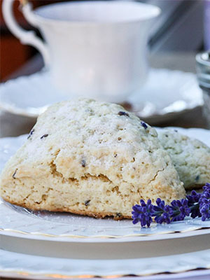 Lavender Scones | The Food Blog