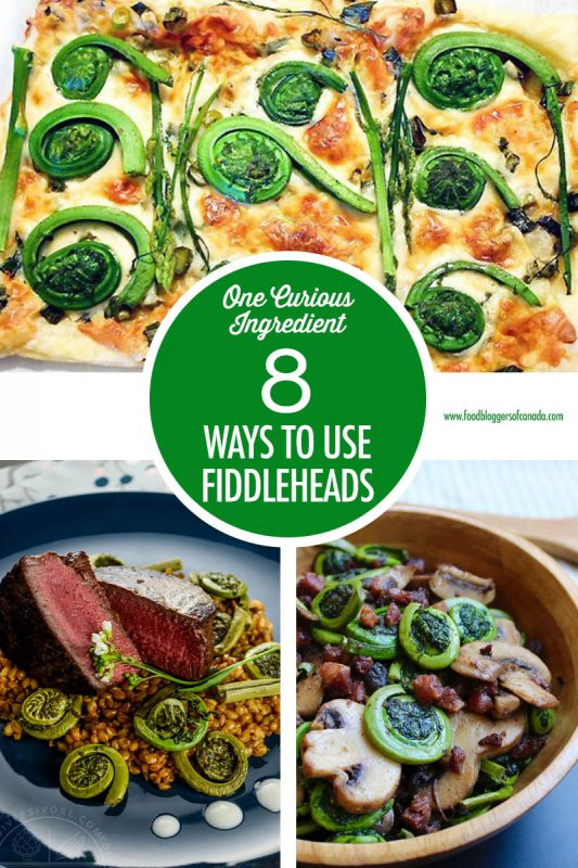 8 Fiddlehead Recipes | Food Bloggers of Canada