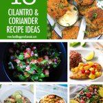 Collage of cilantro recipes