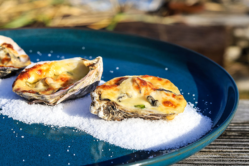 Miso baked oysters on a blue plate